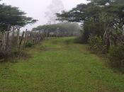 Catacocha-San Pedro Martir, ruteando caminos herradura