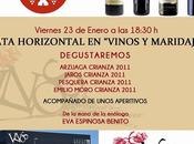 VINOS MARIDAJES: Cata horizontal D.O. Ribera Duero (Crianza 2011)