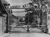 Auschwitz: años apertura infierno