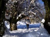 Nieve virgen paisajes inmaculados montañas navarras llegada invierno