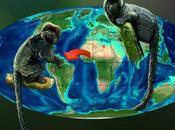 fósiles hallados Perú Libia 'hermanan' monos Sudamérica África