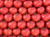 busca tomate perfecto