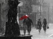 Bajo mismo paraguas