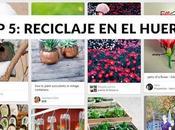 DIYs reciclaje huerto