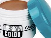 Maquillaje corrector: Dermacolor Kryolan (Swatches)