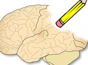 Usan ultrasonido para revertir síntomas Alzheimer