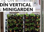 Hazte jardín vertical Minigarden