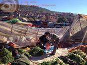 Mercado Bereber, cerca Marrakech