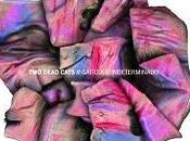 EPisodio Dead Cats Gatículo Indeterminado
