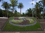 Parque Garcia Sanabria, Santa Cruz Tenerife
