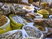 Garum: conservación pescado placer plato