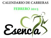 Calendario carreras febrero 2015, sevilla alrededores.