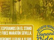 Maratón solidaridad donación órganos