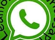 Iniciativa whatsapp
