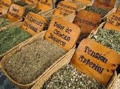 plantas medicinales mercadillos ambulantes demás hierbajos