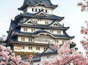 HANAMI (花見): florecimiento cerezos Japón
