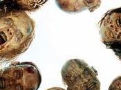 Encuesta: quinta temporada mejor Walking Dead?