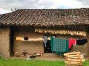 Vivienda tradicional Saraguros