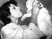 gatos Anna Magnani