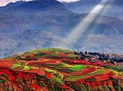 Tierra Roja: Asombroso hermoso fenómeno China