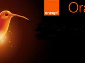 Tarifa colibrí Orange: navega Facebook Twitter