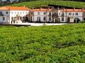 Tres rutas enológicas Galicia
