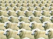 Matemáticas para mejor rendimiento ganadería