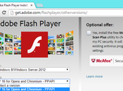 Como evitar riesgos agujeros seguridad Adobe Flash Player