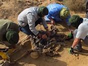 Proceso altos cargos marroquíes genocidio Sáhara