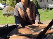 Salma Hayek ayuda ciervo había sido atropellado
