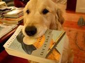 libros para leer sobre perros