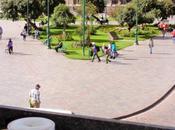 Cuzco (cusco)