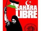 Muerte Sahara, silencio España