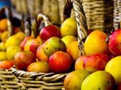 caso manzanas