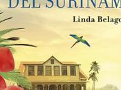 Flor Surinam Linda Belago