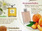 Guía práctica para elegir perfume perfecto