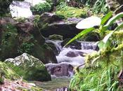 importancia agua para turismo valle mocoties.