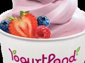 Yogurtland Helados sabores exóticos gusto, franquicia crecimiento internacional
