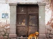 Cusco ciudad bonita Perú