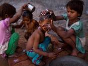 debe calor cobrado miles víctimas India?