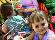 ¿pueden organismos modificados genéticamente ayudar alimentar mundo?