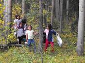 influencia espacios verdes desarrollo cognitivo niños