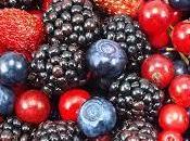 Frutos bosque bayas: vitaminas, antioxidantes para salud belleza
