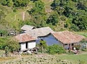 Migración hacia mundo rural