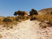 Casa Crimen (Alicante)