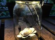 friendly handmade Sudáfrica. Consol Solar Jar, lámpara solar tarro