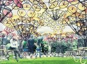 "Pabellón ""City Dreams"" Nueva York. ""Organic Growth"" Izaskun Chinchilla Architects-Madrid"