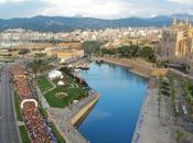 Socios Maratonistas. Sevilla Palma Mallorca