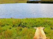 Huaraz: preparando Trek Santa Cruz