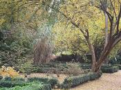 Bonito Otoño Botánico Madrid